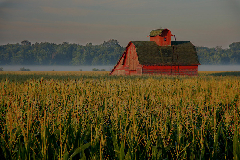 farm and crop insurance in Frankfort STATE | Gnade Insurance Group, Inc.